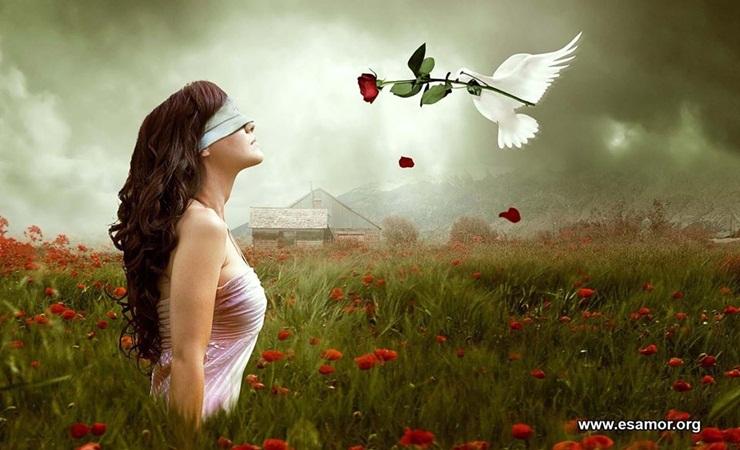 el ave y  la mujer