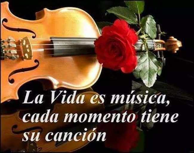 la vida es música-1