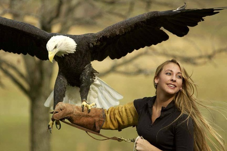 La bella y el ave-1