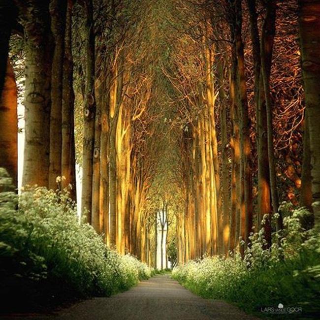 hermosa natura