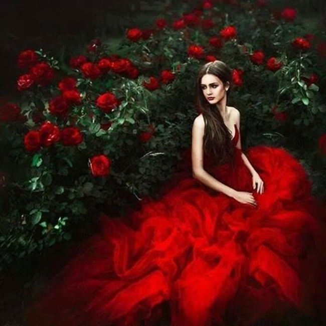 rosa-roja-1
