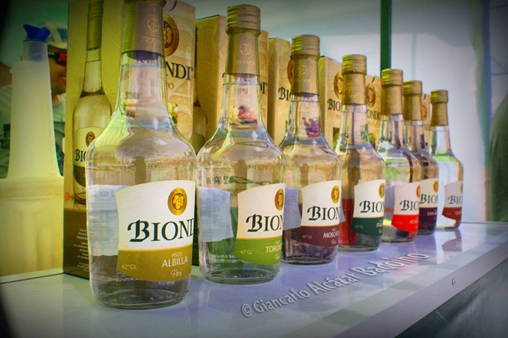 piscos-biondi-1