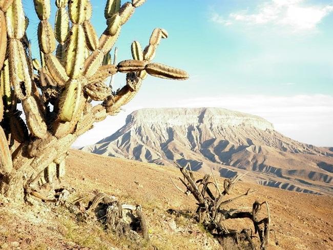reino-del-cerro-baul-1