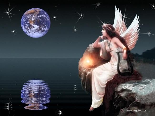 amor y paz-1111